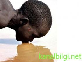 kolera-hastaliginin-belirtileri-nelerdir