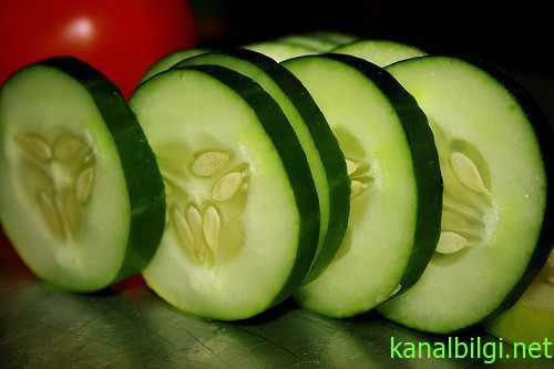 salatalik-diyet-programi