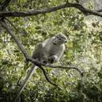 masaustu-fotograflari-kanalbilgi-net-foto (17)