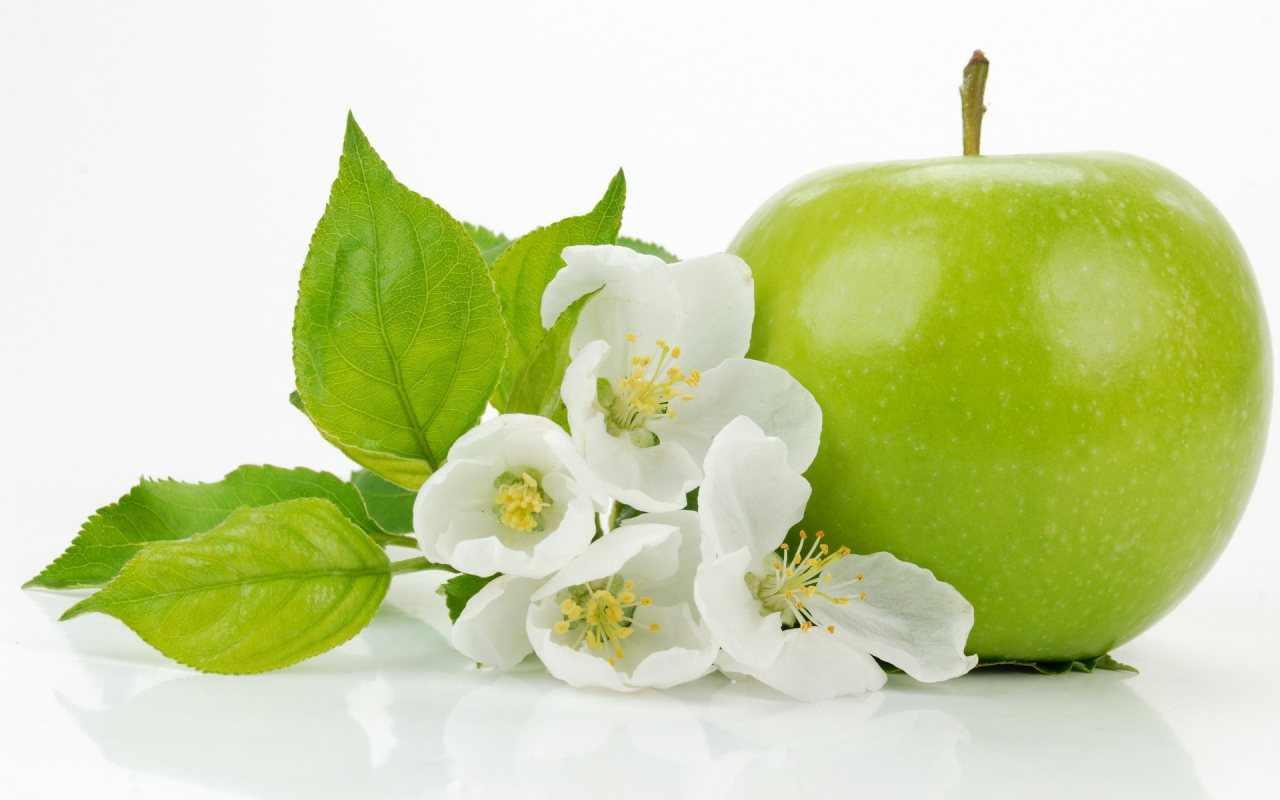 zayiflama-diyet-programi (12)