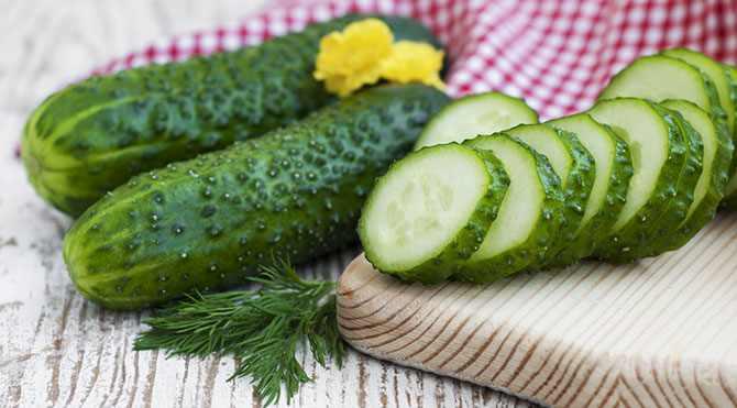 salatalik-diyeti